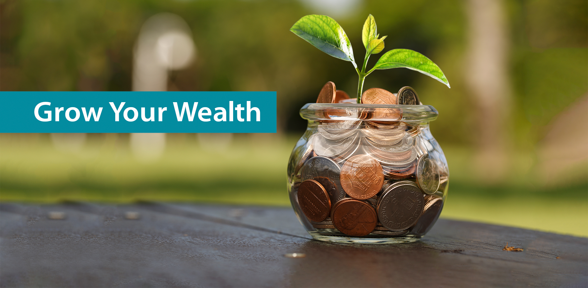 Financial Wellness for Baby Boomers